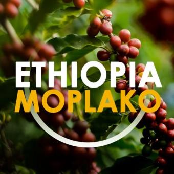 КАФЕ НА МЕСЕЦ МАЙ 2015 - Етиопия Моплако - 200,8g