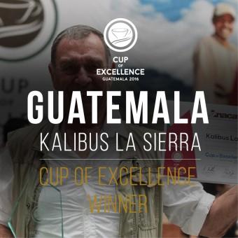 КАФЕ НА МЕСЕЦ ДЕКЕМВРИ - Победител на СОЕ - Гватемала 2016 No 1 - Калибус Ла Сиера