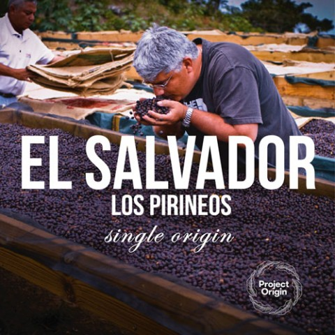 КАФЕ НА МЕСЕЦ ДЕКЕМВРИ 2017 - Салвадор Лос Пиринеос