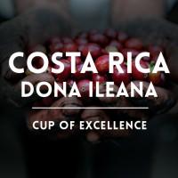 Кафе Коста Рика – Доня Илеана е кафе на месец декември!