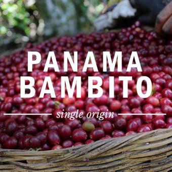 КАФЕ НА МЕСЕЦ МАЙ 2016 -  Панама Бамбито 200.8 гр.