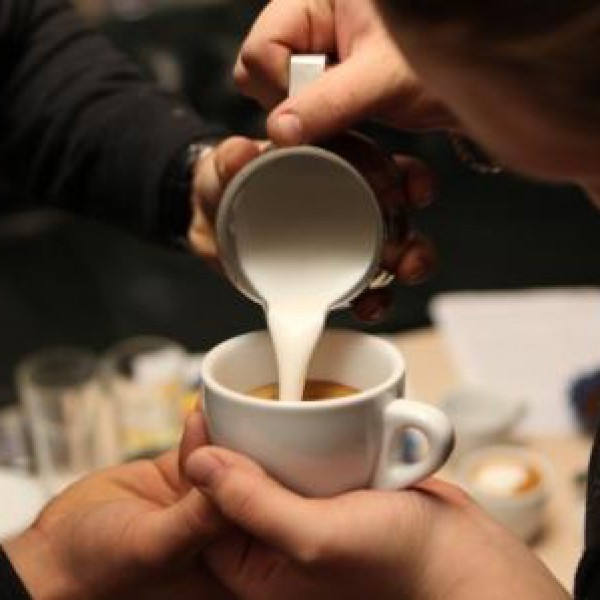 Barista certification from SCA
