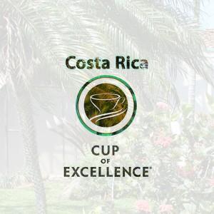 Доня Илеана Коста Рика отново в DABOV Specialty Coffee